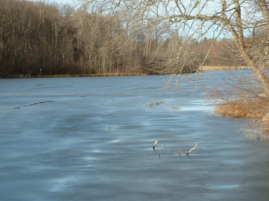 Frozen Pond by tango793