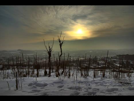 Foggy sunset _HDR_