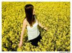 Yellow field woman