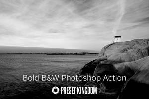 Free Bold Black and White Photoshop Action by presetkingdom