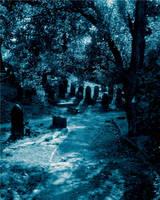 Cemetery Pic 1 by ThrashingMadness