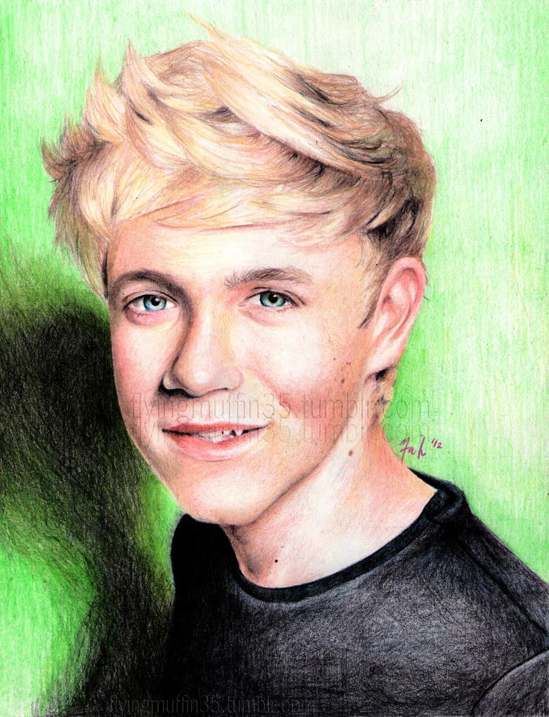 Niall by flying-muffin