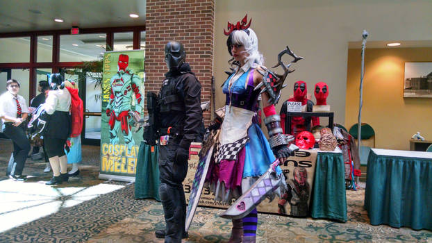 Cosplays for Anime St. Louis 2017
