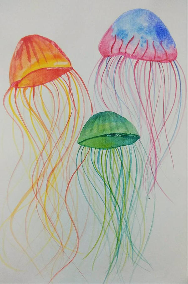 Jellyfish  by Ishi236