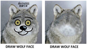 Draw Wolf Face