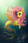 Fluttershy the Seapony