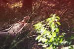 Lying on dead pine trees by YaelBelledecandeur