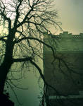 foggy fortress