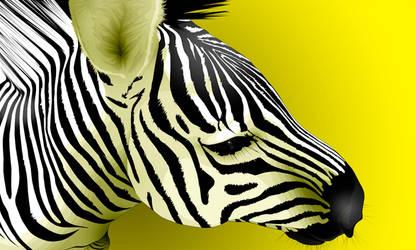 Equus by danadabby