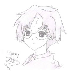 Harry Potter by Anandine