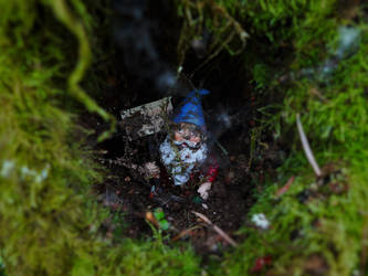 little gnome