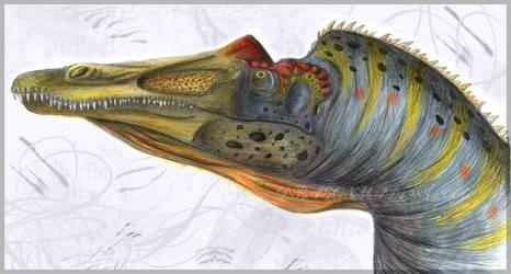 Suchomimus Coloured