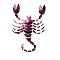 Scorpio Zodiac Pink and Black