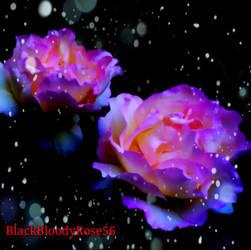 P A S S I O N A T E by BlackBloodyRose56