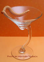 Martini Snake by HeatherTelesca