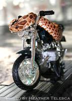 Motor Zot by HeatherTelesca