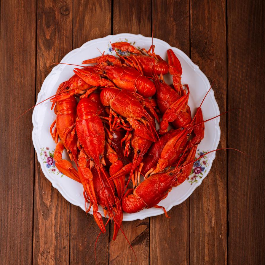 Crayfish by K1Bork