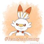 #TeamScorbunny