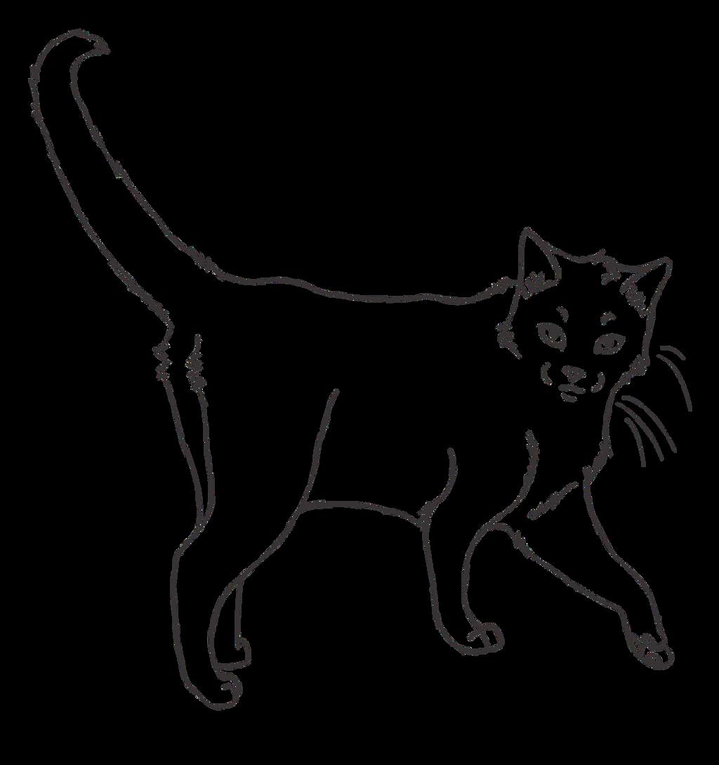 Fluffy Warrior Cat Outline