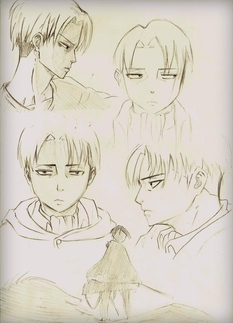 Levi character sheet by missanimestranger