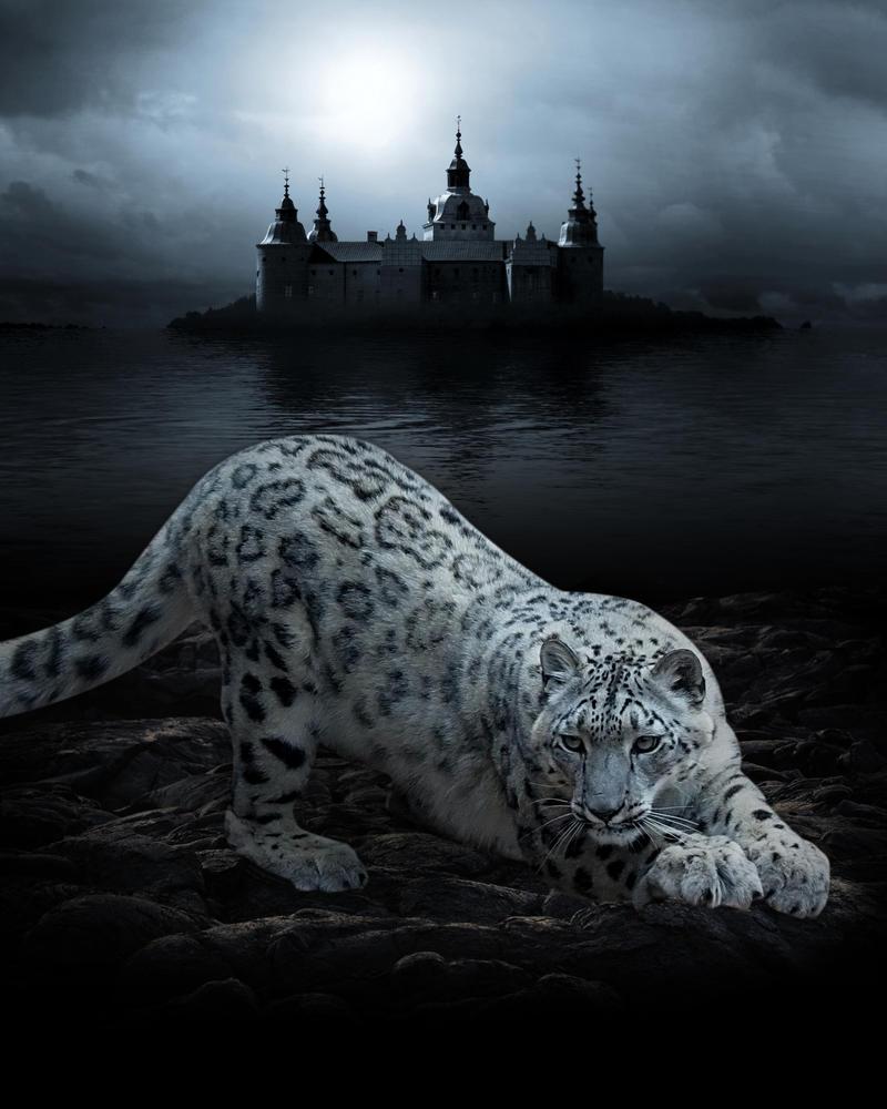 Black Water by amiens