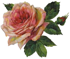 Vintage Flower Png PilarHashira By PilarHTutorial