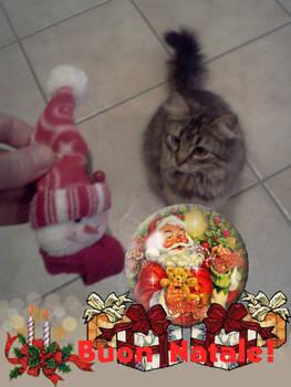 Buon Natale! (Merry Christmas!)