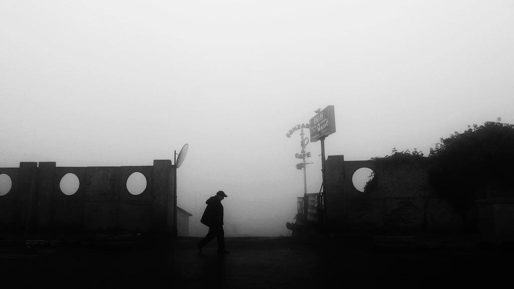 Life by CekicPhotography