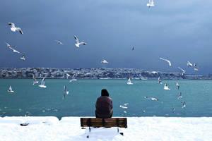 Alone by CekicPhotography