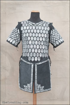 Thorin scale armour