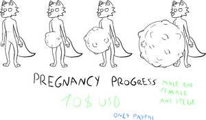 YCH Pregnancy progress