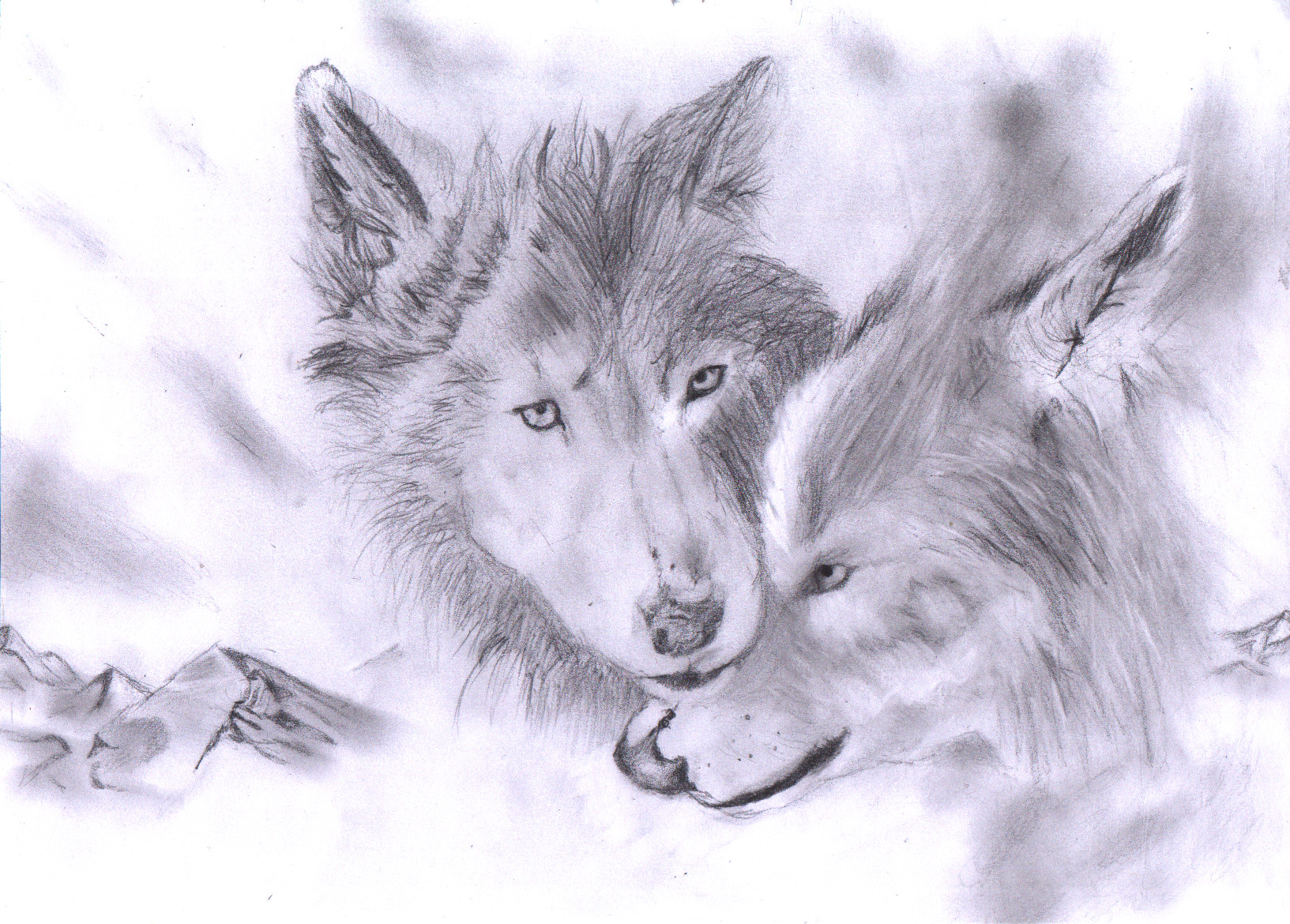Wolf Mates Drawing 6 b...