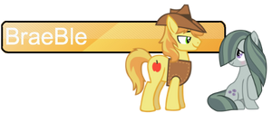 BraeBle - Shipping Banner