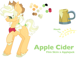NG Apple Cider - Reference Sheet by Cheschire-Kaat