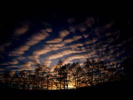 I really love the sky