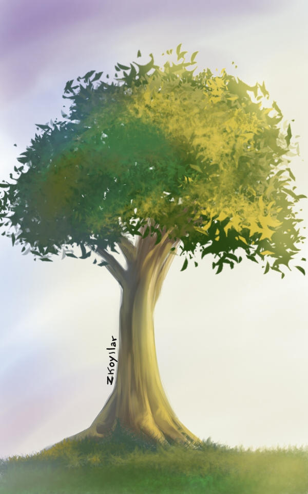 Tree sketch challenge by zkoyllar