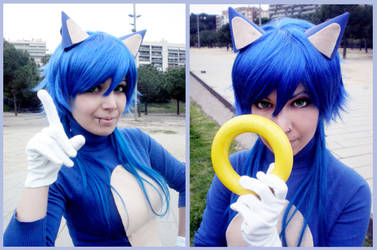 Sonic the Hedgehog! by Nymstark