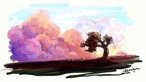 cloudses