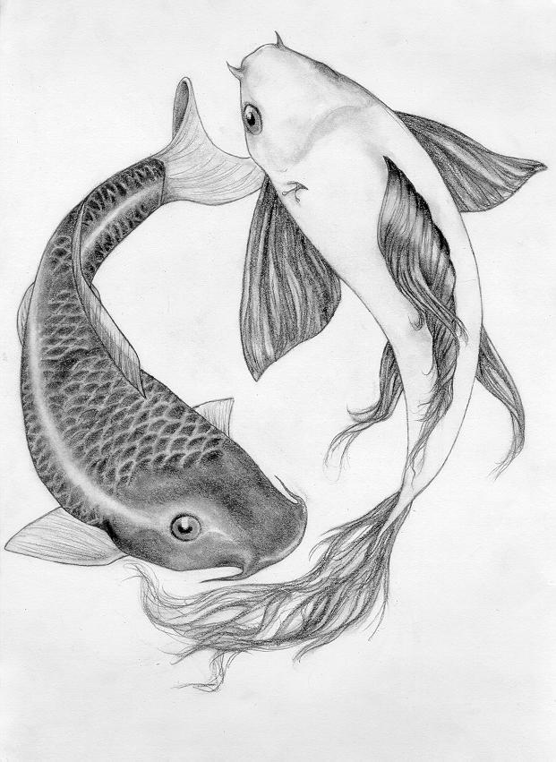 Koi fish tattoo by buttis on deviantart for Koi fish sketch