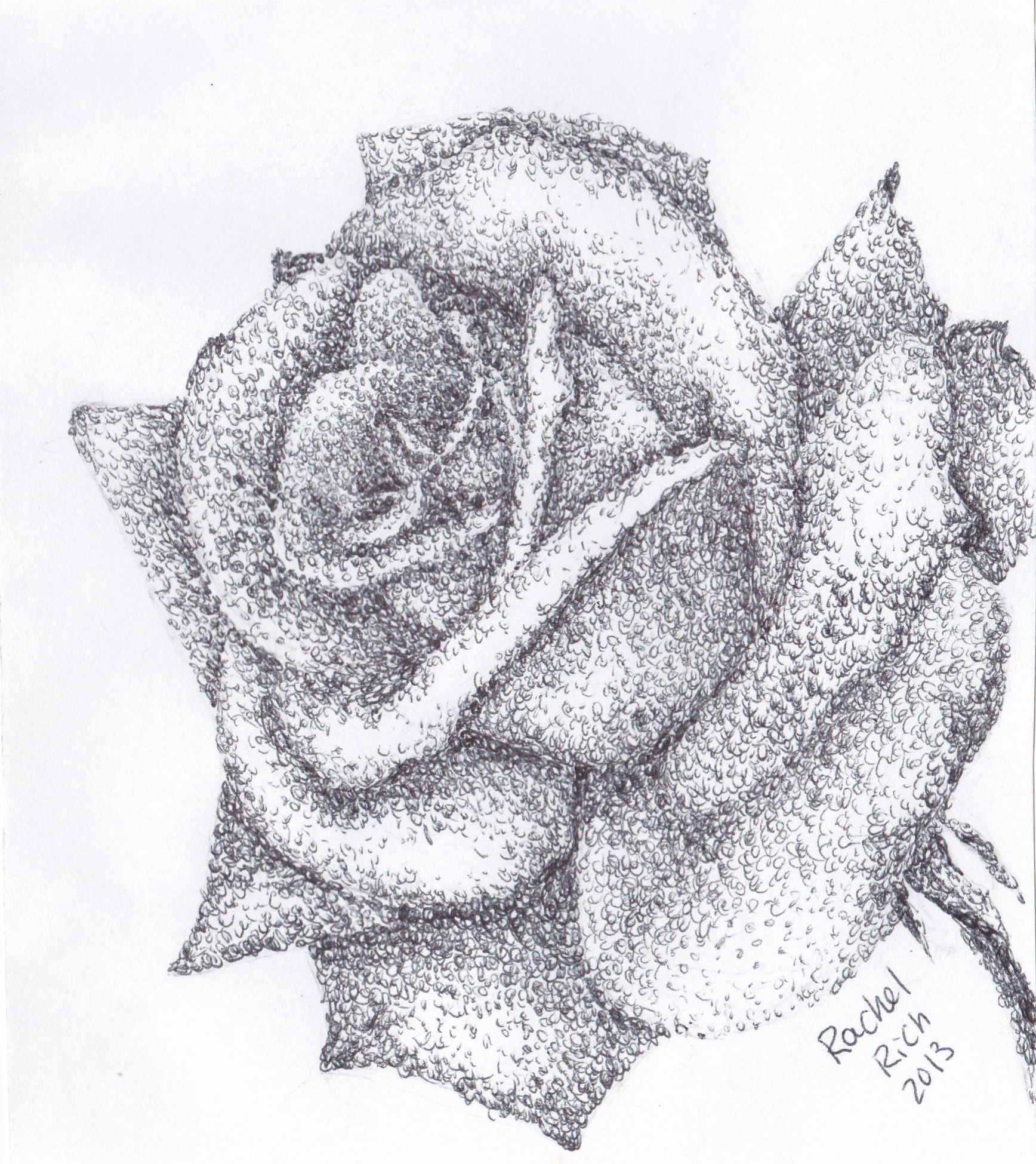 Scribble Drawing Art : Scribble rose by rcr on deviantart