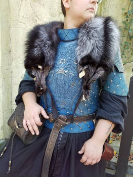 Norse Wolf Armor 1