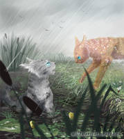 Jayfeather and Flametail. Warriors by Romashik-arts