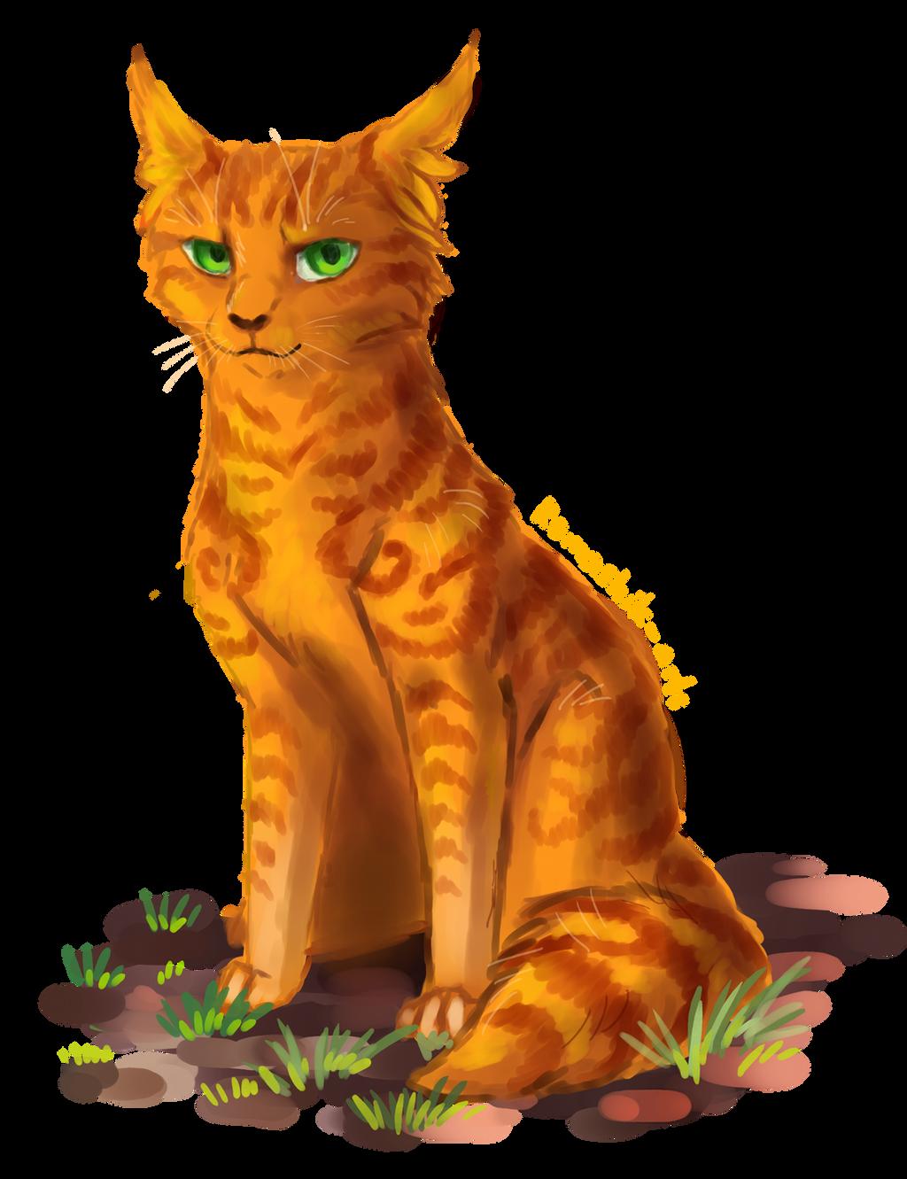 Firestar. Warriors by Romashik-arts on DeviantArt Warrior Cat Drawings Firestar