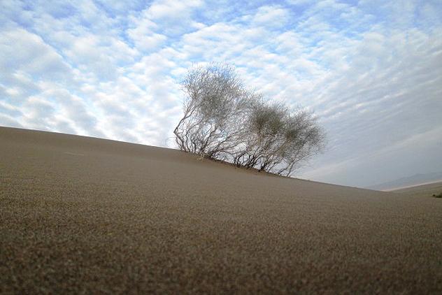Through-wind