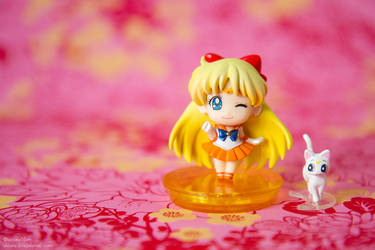 Sailor Venus. SailorMoon