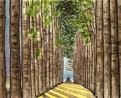 Nami Island, Naminara Rep. Near Metasequoia Lane by Vokabre