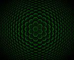 wallpaper_green 6