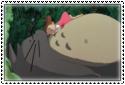 Totoro... by GriffinMyth