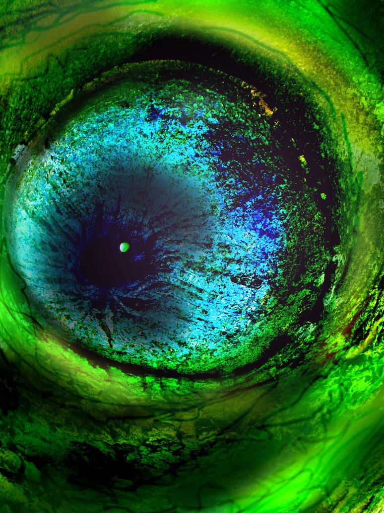 Colin the Charmelion's eye by MODDEYDOO