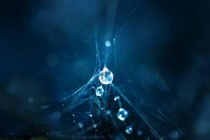 Protostar by brandtcampbell